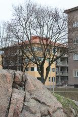 Low energy housing