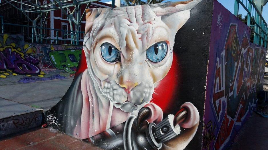 Graffitit – Las Palmas: Santa Catalinan skeittipuisto