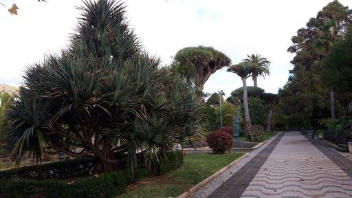Nähtävyyksiä – Arucasin kunnan puisto Gran Canaria