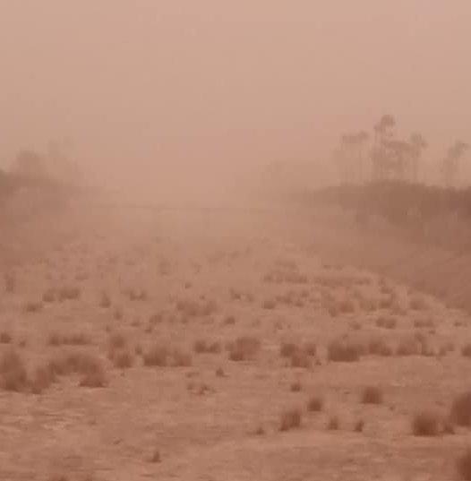 Kolumnit - Ilmastonmuutos Kanarialla?