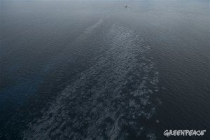 Uponneen aluksen öljylautat leviävät kohti rannikkoa:  - vahingoittavat meriympäristöä, ekosysteemiä ja matkailusektoria