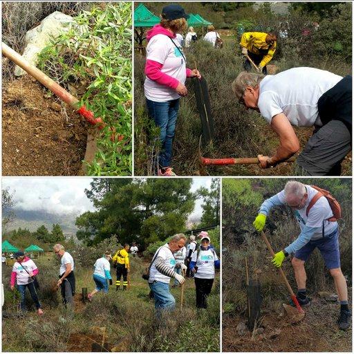 Yleistä - Suomalaiset taas puutalkoissa Gran Canaria