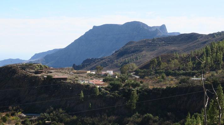 Yleistä - Puunistutustalkoot Gran Canarialla