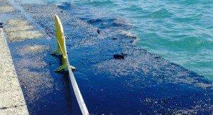Öljyvuoto Kanarialla – rantoja suljettu