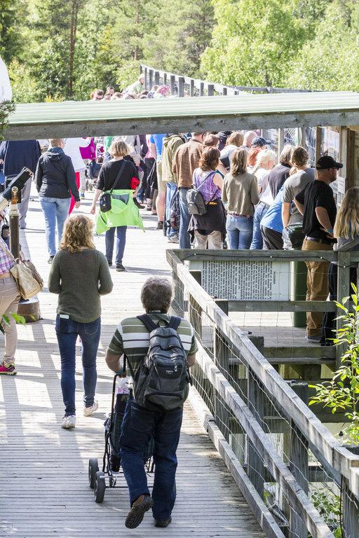 Ranuan eläinpuiston ydinkesä oli vilkkaampi kuin viime vuonna.