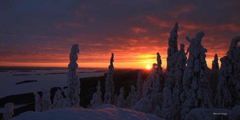 Talvinen kansallismaisema antaa aavistuksen Pohjolan kaamoksesta.