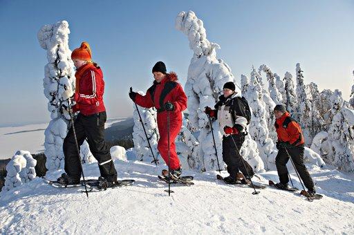 Lumikenkäily on lyhyessä ajassa noussut suosituksi liikuntamuodoksi myös Kolilla. Kapuaminen vaaran laelle talvisilla hangilla on antoisa elämys.