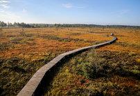 Viisi valloittavaa luontokohdetta<br /> Liettuassa