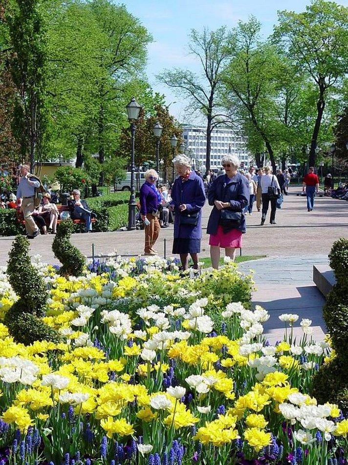 Kesä Helsingissä menee Sibeliuksen hengessä