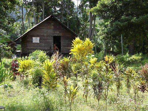 Mies majassaan tarkkailee saaren päätien kulkijoita Ban Ting Rai -kylässä. Maja on ehkä vaatimaton, mutta piha sitäkin komeampi.