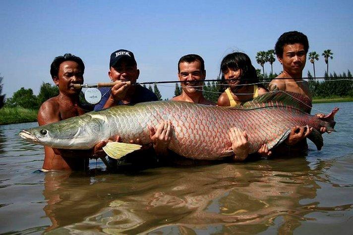 Annos oudompaa Thaimaata