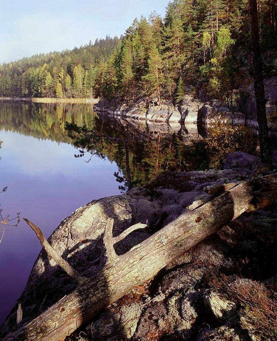 Koloveden kansallispuisto, Vaajasalo. Kuva:Tapio Tuomela.