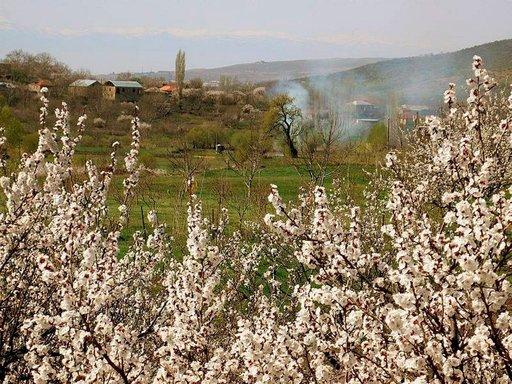 Kevät koittaa Nazervanissa.