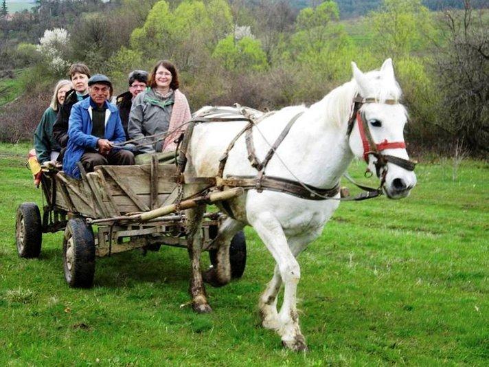 Matka 1960-luvulle: Maaseuturomantiikkaa<br /> hevosrattailla Romanian keväässä