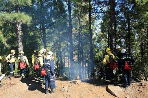 Palomiehet harjoituksessa mäntymetsässä.