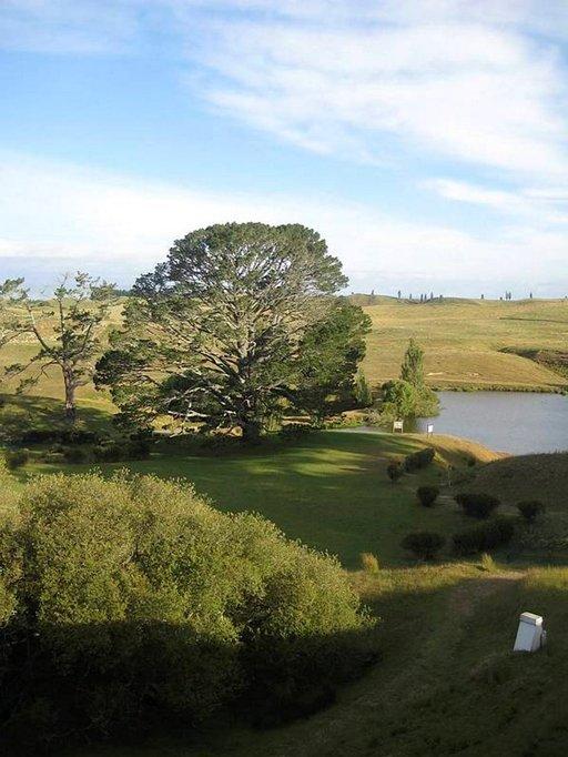Puu, jonka alla Frodo ja Gandalf tekivät sopimuksen.
