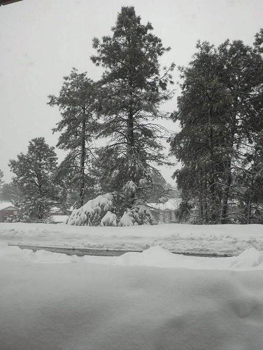 Lumi yllätti Flagstaffissa Arizonassa.