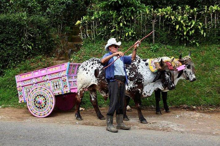 COSTA RICA &ndash; V&auml;li-Amerikan<br /> luontomatkailun helmi
