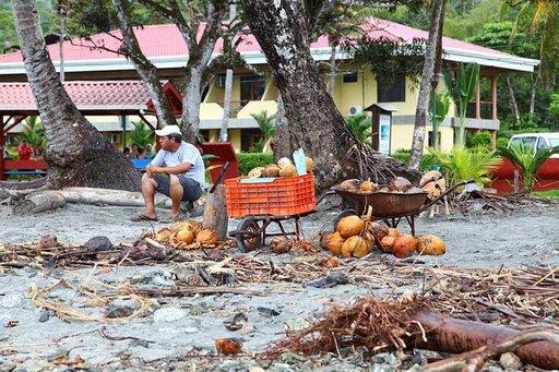 Kookoksia myydään Manuel Antonion rannalla.
