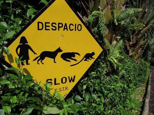 Apinoista ja laiskiaisista varoitellaan Manuel Antonion kansallispuistossa.