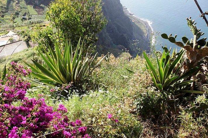 L&ouml;yt&ouml;retkeilij&ouml;iden vanavedess&auml;<br /> isolla merell&auml; Madeira ja Azorit