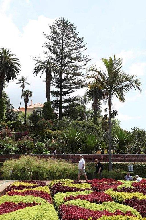 Madeiran kasvitieteellinen puutarha on perustettu 1960 ja siellä kasvatetaan yli 2500 kasvilajia.