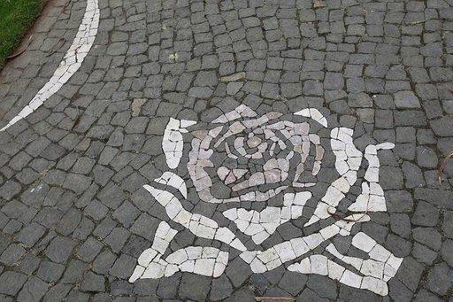 Ruusu koristaa puiston kävelytietä.