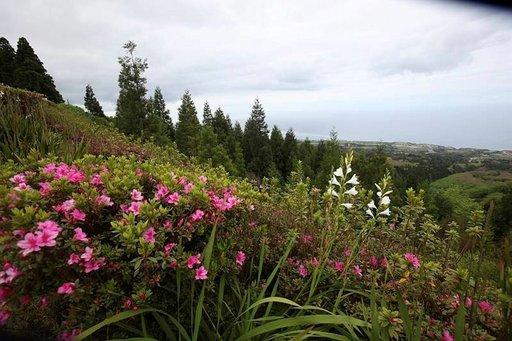 Azorit on luonnonystävän matkakohde.