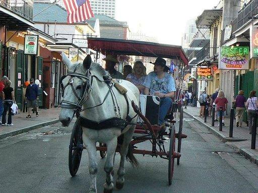 Mukava tapa tutustua kaupungin keskustaan on kiertoajelu hevosvaunuilla.