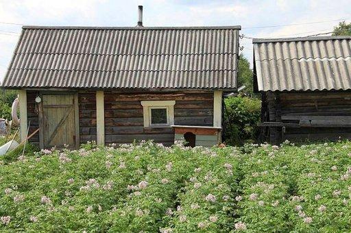 Makoisista kylyistä sai nauttia Helmi Korshunovan saunassa.
