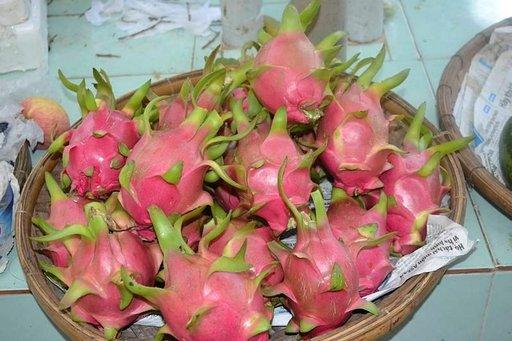 Pithaya-hedelmiä on tarjolla Suomessakin.