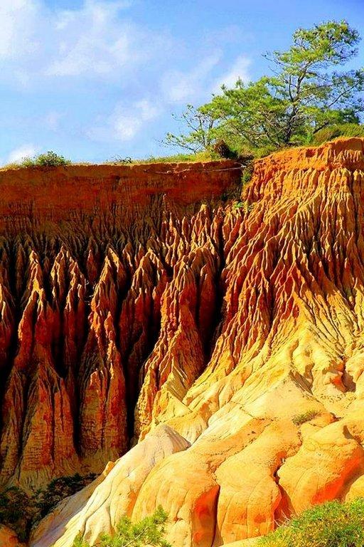 Kalliomuodostelmia Torrey Pinesissa.