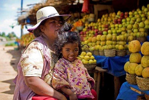 Bussimatkoilla matkailija voi nauttia kauniisti järjestetyistä hedelmäkojuista sekä silmillään että makuaistillaan.