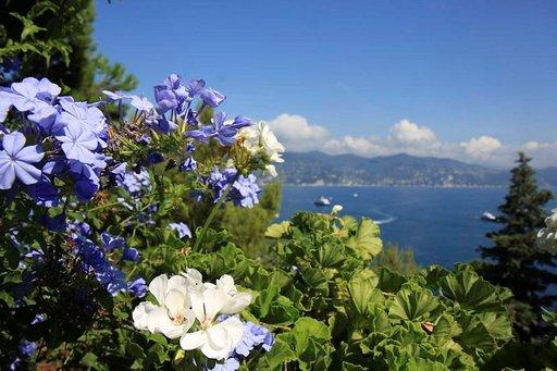 Portofinoa ympäröivä luonto hehkuu väreissä.