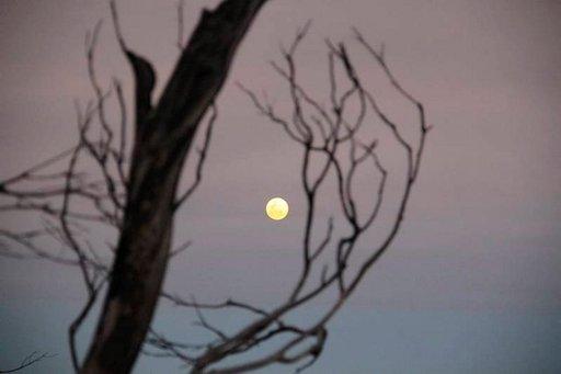 Auringon laskiessa pystyy päätä kääntämällä ihastelemaan täysikuuta.