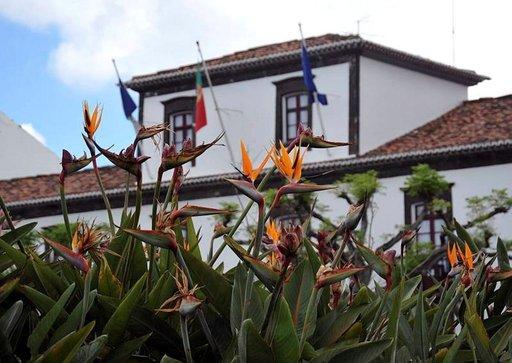 Azoreilla on runsaasti kukkaloistoa. Madeiran kansalliskukka strelitzia viihtyy siellä hyvin ja hortensia-pensaat toimivat eläinaitoina, koska ne eivät pahanmakuisina kelpaa eläimille.