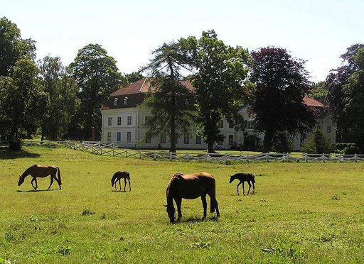 Hevosharrastus on Hessenin ruhtinassuvun vuosisatainen perinne. Taustalla hotelli Ole Liese.