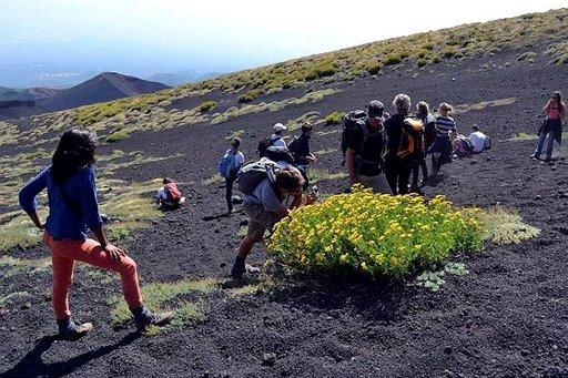 Vuorella on myös kasvillisuutta. Monet lajit ovat kotoperäisiä ja niitä tavataan vain Etnan rinteillä.