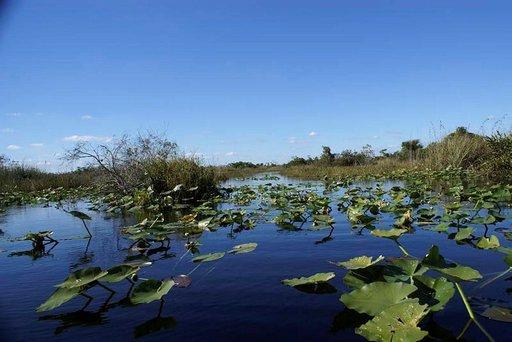 Melontaväylä. Loaxahatcee Wildlife Refuge.