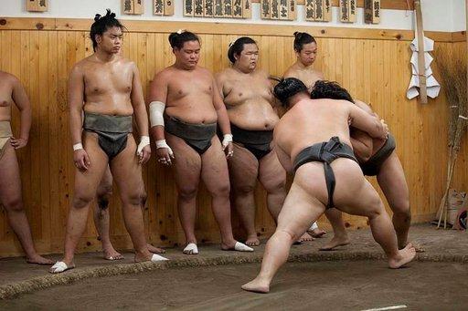 Sumopaini on yksi perinteisimmistä japanilaisista lajeista, joita pääsee seuraamaan useissa paikoissa.