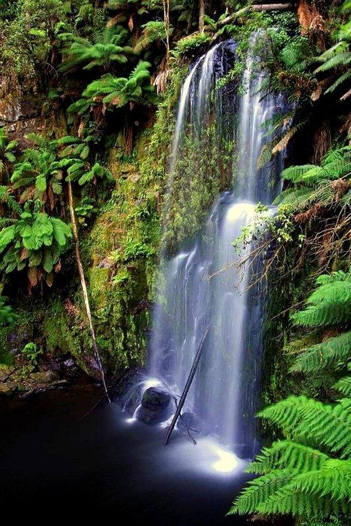 Etelä-Australiassa sijaitseva Beauchampin vesiputous on kuin suoraan sadusta.