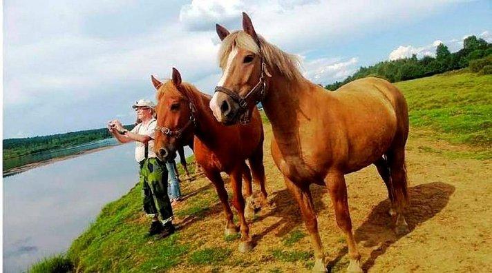 Unohtumaton päivä<br /> hevossaarella
