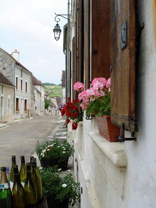Irancy'n pikkukylässä on lukuisia viinitarhojen omia myymälöitä.