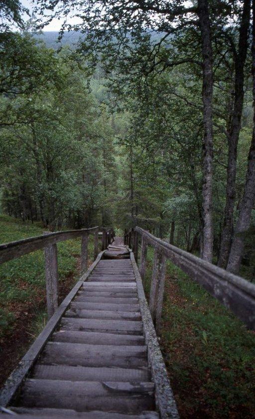 Helatorstain Kirkon portaat. Vangit sidottiin puunrungon pätkiin ja työnnettiin alas portaita varmaan kuolemaan.