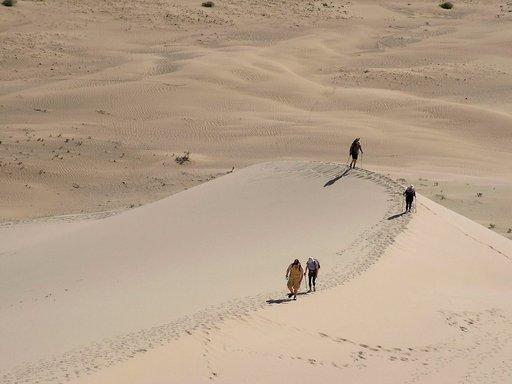 Aavikot kuuluvat Mongoliaan, varsinkin Gobin autiomaa on niistä kuuluisa.