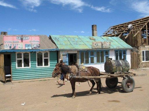 Mongolialaisten tärkein kulkuneuvo on hevonen.