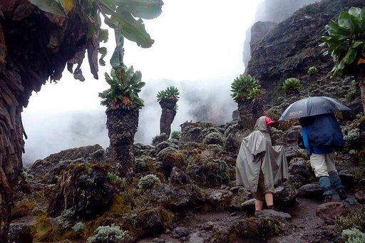 Jättiläisvillakoiden viitoittamalla tiellä kohti Barrancon seinämää. Erilaisille sadevarusteille löytyi käyttöä.