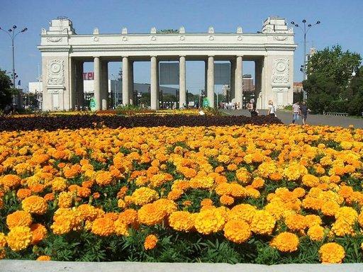 Gorkin puistosta on tullut Moskovan suosituin kohde.