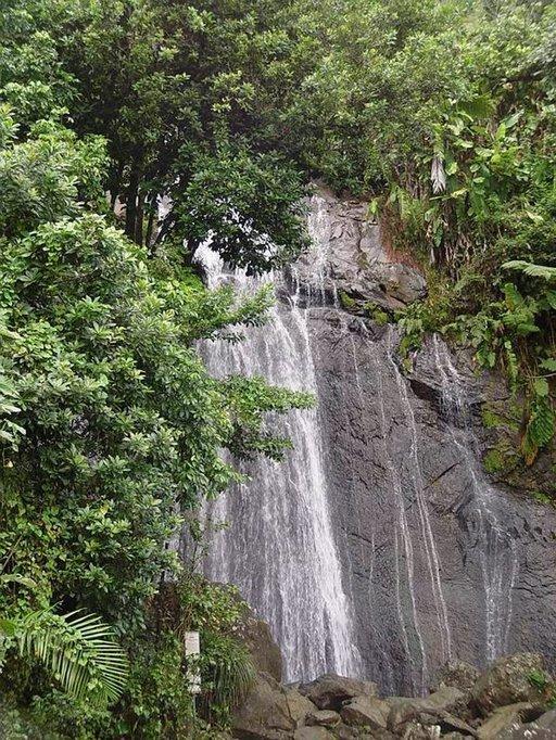 El Yunquen kansallispuistossa on lukemattomia vesiputouksia.