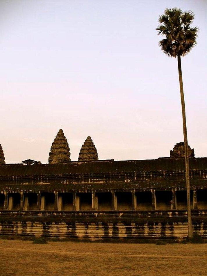 Idän villi<br /> Kambodža